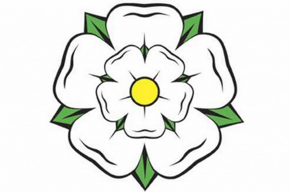 yorkshire-rose-378697727
